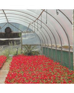 Lumisol CLEAR Polytunnel Cover - Per Meter - Various Widths