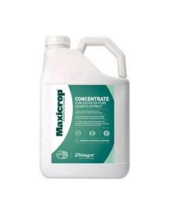 Maxicrop Concentrated Seaweed Plant Food - 10ltr
