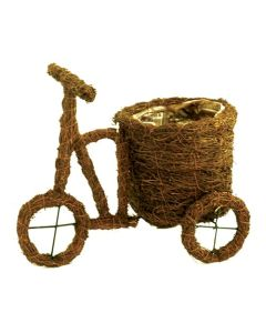 Salim Tricycle Planter (12/bag)