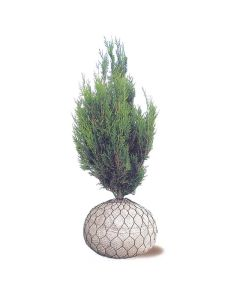40cm (25-30cm Rootball) Wire Rootball Basket - 60 Pack