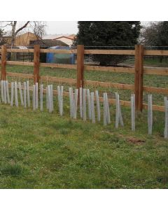 """24"""" Clear Spiral Tree Guards - No Holes (38mm) (250/Case)"""