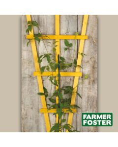 "45"" Large Plant Fan Trellis Natural Pk5"