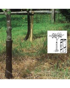 """18"""" Clear - 38mm Spiral Tree Guards (250)"""