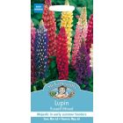 Mr Fothergills Flower Seeds - Flowers Lupin Russell Mixed