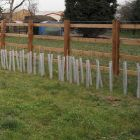 """24"""" Clear Spiral Tree Guards - No Holes (50mm) (250/Case)"""